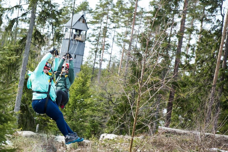Abenteuer Ziplining in Schweden