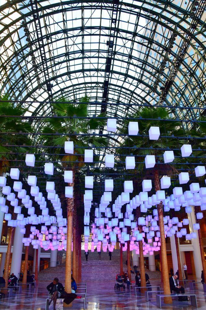Winter Garden of the Mall