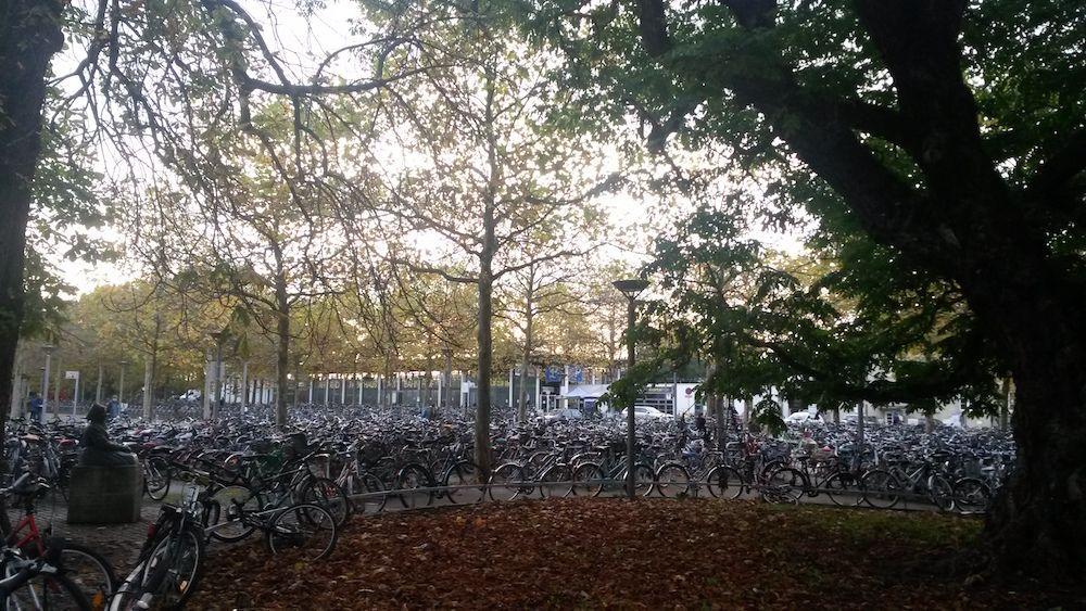 Der Fahrradfriedhof am Hauptbahnhof