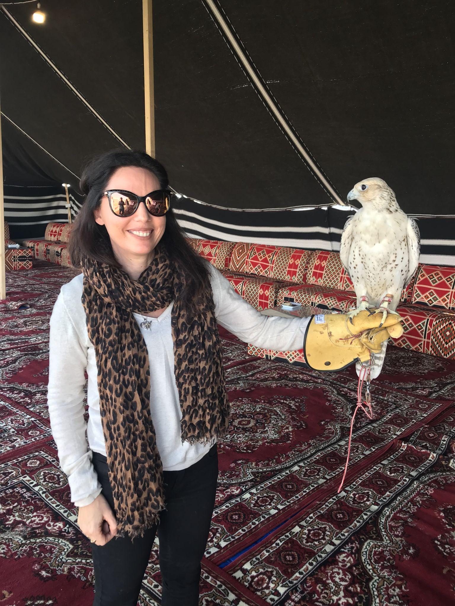 Falken in Doha