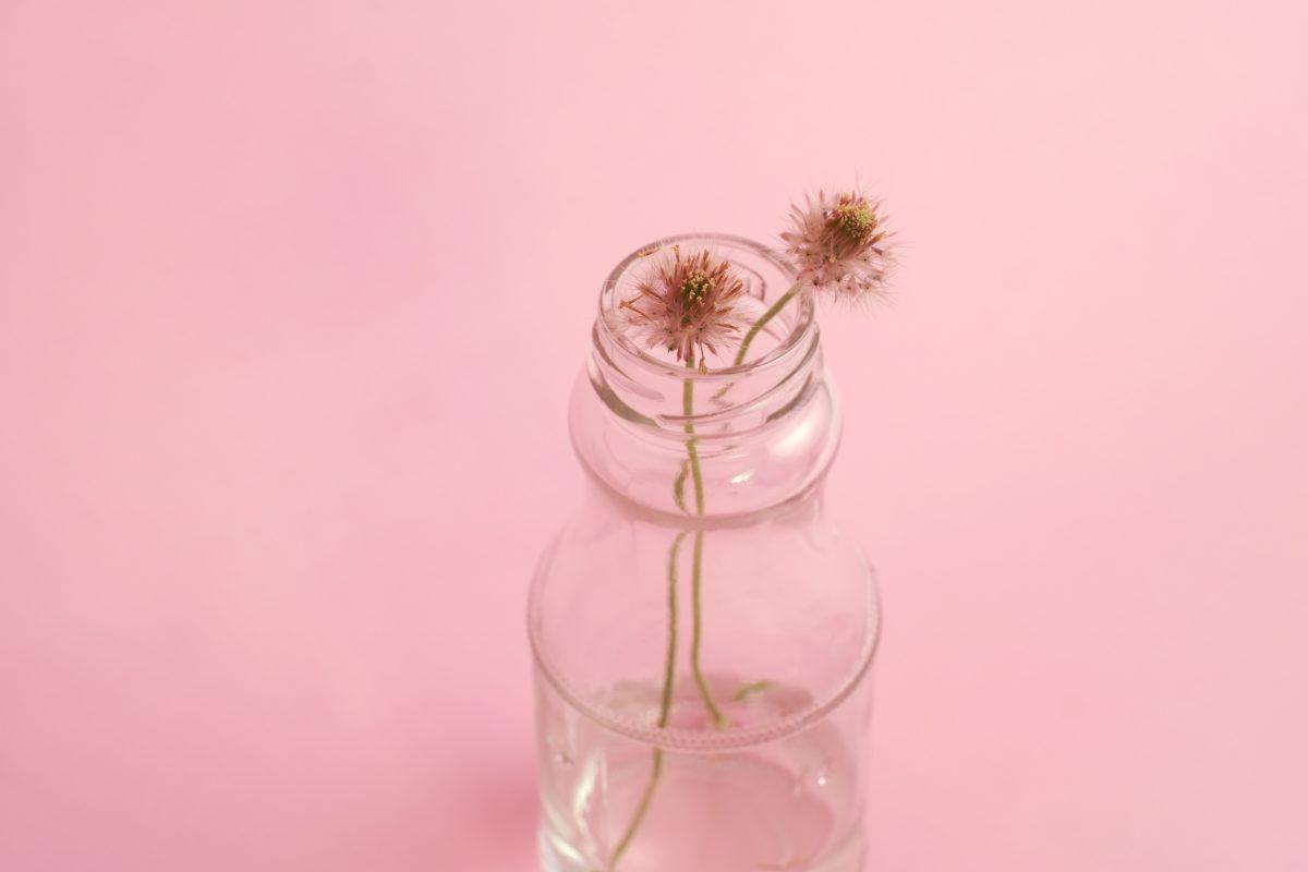 10 Tipps für mehr Nachhaltigkeit im Alltag